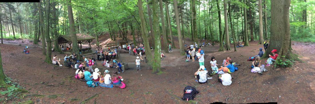 Erster Halt im Wald